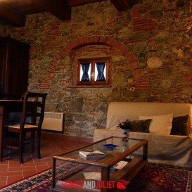 living-room-with-stone-walls