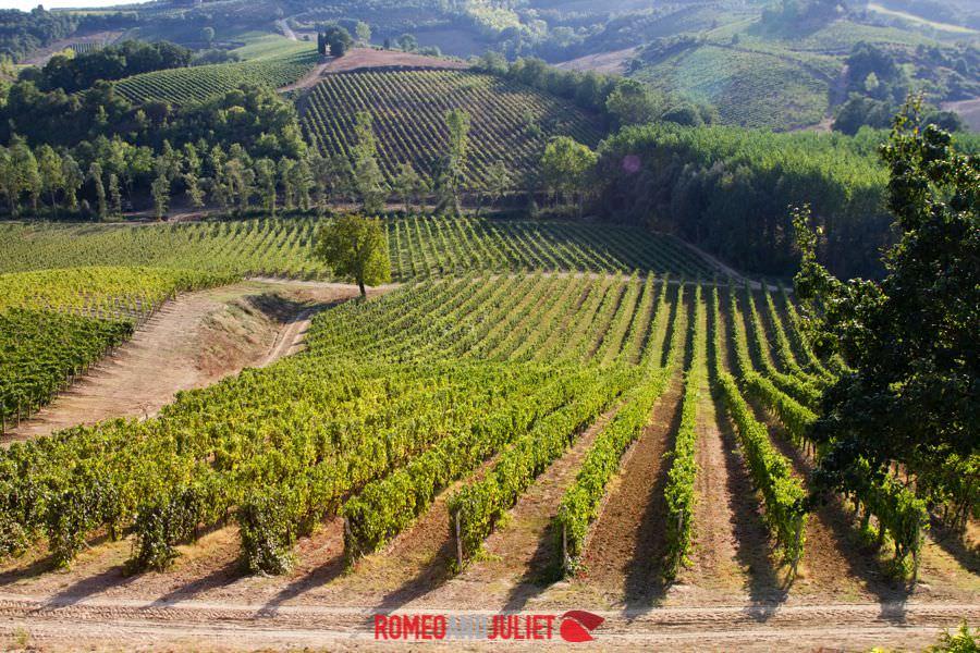 San Gimignano Villa Wedding Tuscany Villa Countryside
